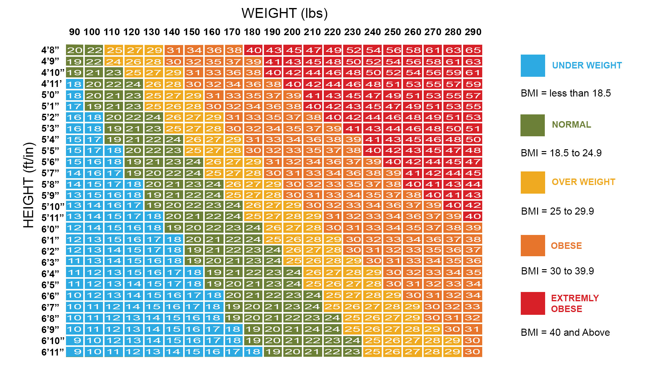 BMI Body Mass Index Calculator   Calculate Your Ideal Healthy Weight